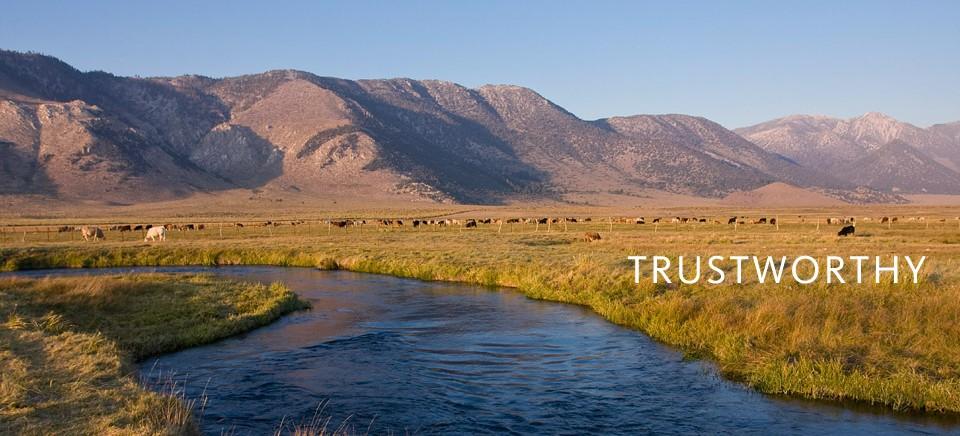 pastures-california-960x480